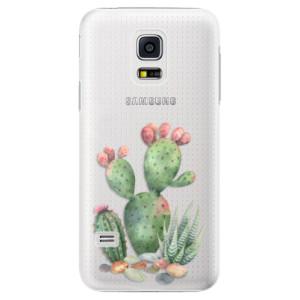 Plastové pouzdro iSaprio Cacti 01 na mobil Samsung Galaxy S5 Mini