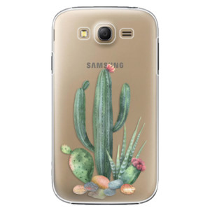 Plastové pouzdro iSaprio Cacti 02 na mobil Samsung Galaxy Grand Neo Plus