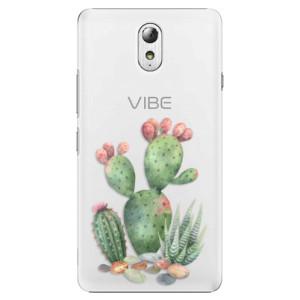Plastové pouzdro iSaprio Cacti 01 na mobil Lenovo P1m