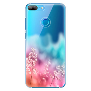 Plastové pouzdro iSaprio Duhová Tráva na mobil Honor 9 Lite - poslední kousek za tuto cenu