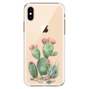 Plastové pouzdro iSaprio Kaktusy 01 na mobil Apple iPhone XS