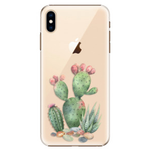 Plastové pouzdro iSaprio Kaktusy 01 na mobil Apple iPhone XS Max