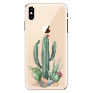 Plastové pouzdro iSaprio Kaktusy 02 na mobil Apple iPhone XS Max