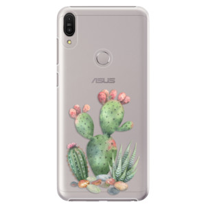 Plastové pouzdro iSaprio Kaktusy 01 na mobil Asus Zenfone Max Pro ZB602KL