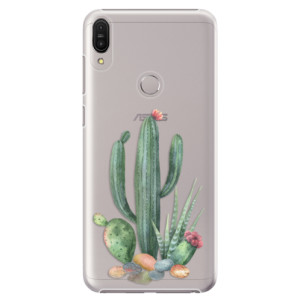 Plastové pouzdro iSaprio Kaktusy 02 na mobil Asus Zenfone Max Pro ZB602KL