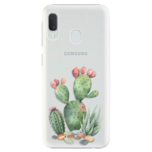 Plastové pouzdro iSaprio Kaktusy 01 na mobil Samsung Galaxy A20e